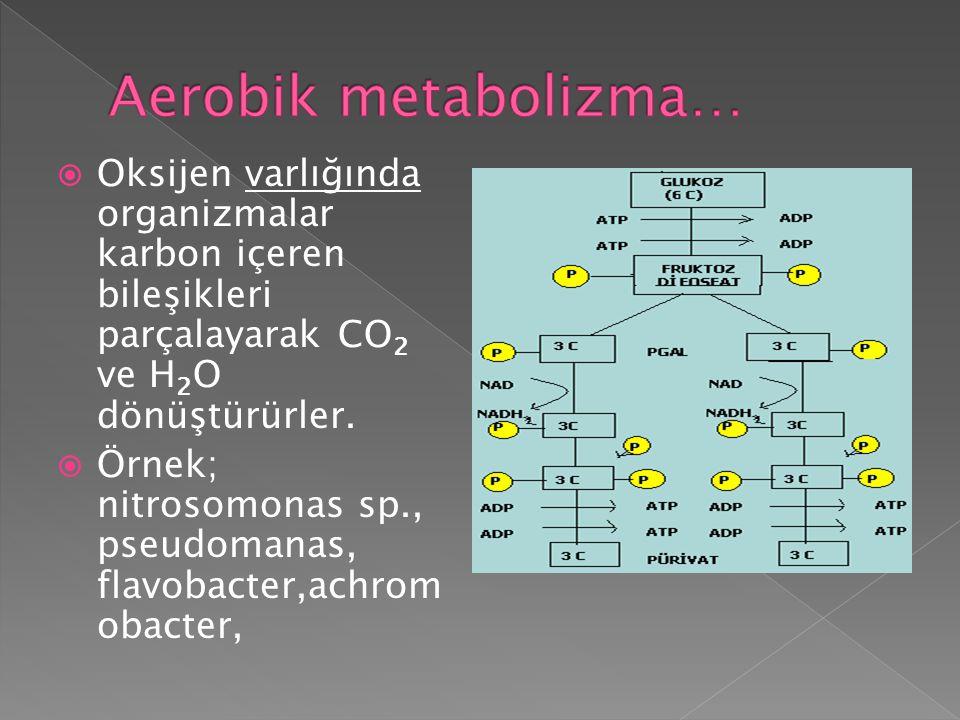  Oksijen varlığında organizmalar karbon içeren bileşikleri parçalayarak CO 2 ve H 2 O dönüştürürler.  Örnek; nitrosomonas sp., pseudomanas, flavobac