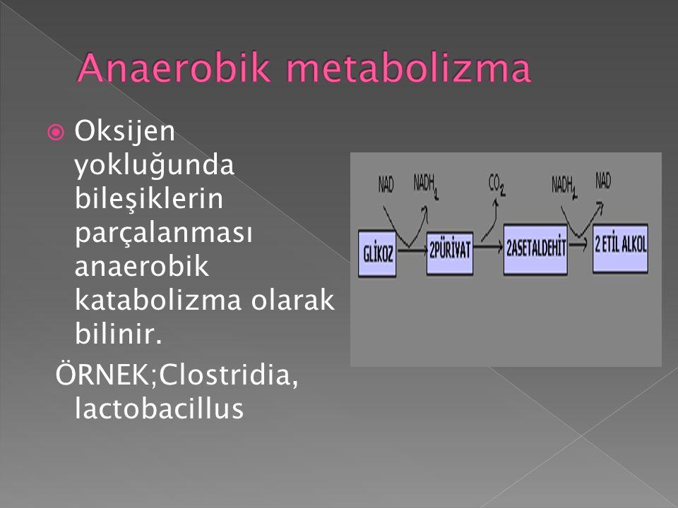  Oksijen yokluğunda bileşiklerin parçalanması anaerobik katabolizma olarak bilinir. ÖRNEK;Clostridia, lactobacillus