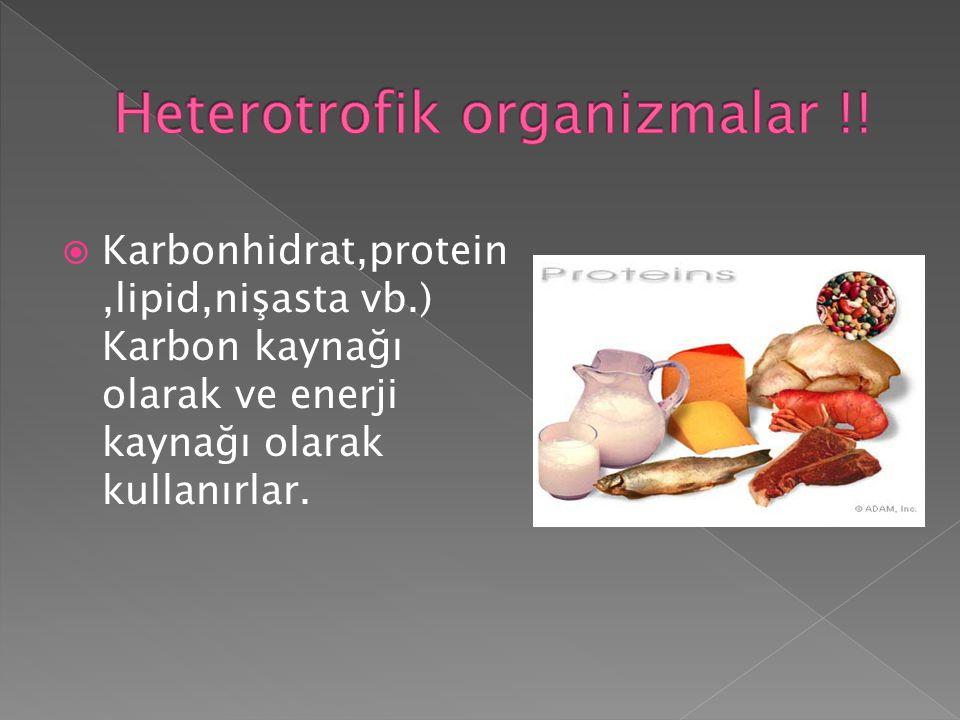  Karbonhidrat,protein,lipid,nişasta vb.) Karbon kaynağı olarak ve enerji kaynağı olarak kullanırlar.