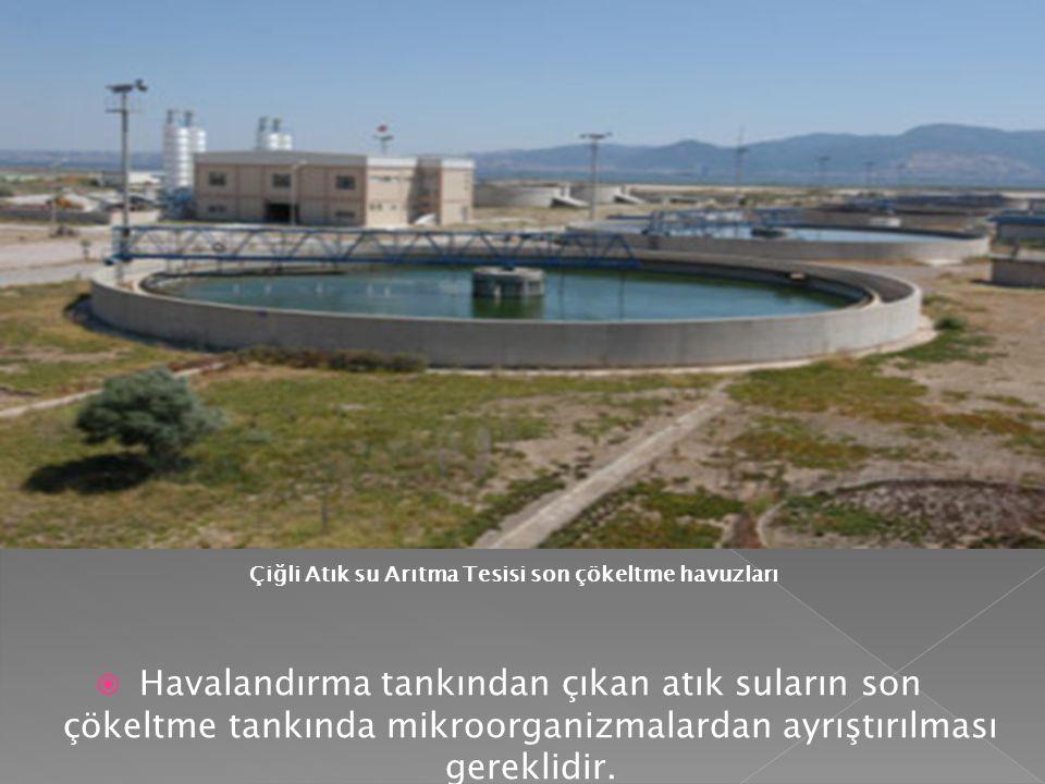  Havalandırma tankından çıkan atık suların son çökeltme tankında mikroorganizmalardan ayrıştırılması gereklidir. Çiğli Atık su Arıtma Tesisi son çöke