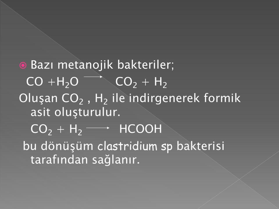  Bazı metanojik bakteriler; CO +H 2 O CO 2 + H 2 Oluşan CO 2, H 2 ile indirgenerek formik asit oluşturulur. CO 2 + H 2 HCOOH bu dönüşüm clastridium s