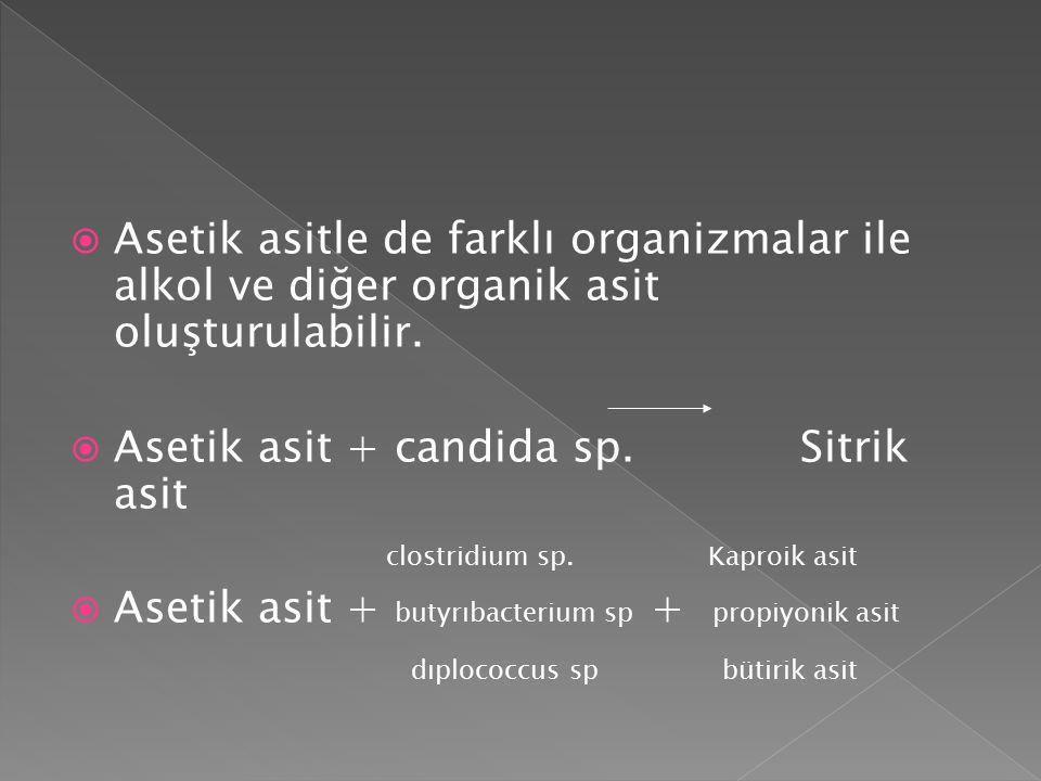  Asetik asitle de farklı organizmalar ile alkol ve diğer organik asit oluşturulabilir.  Asetik asit + candida sp. Sitrik asit clostridium sp. Kaproi