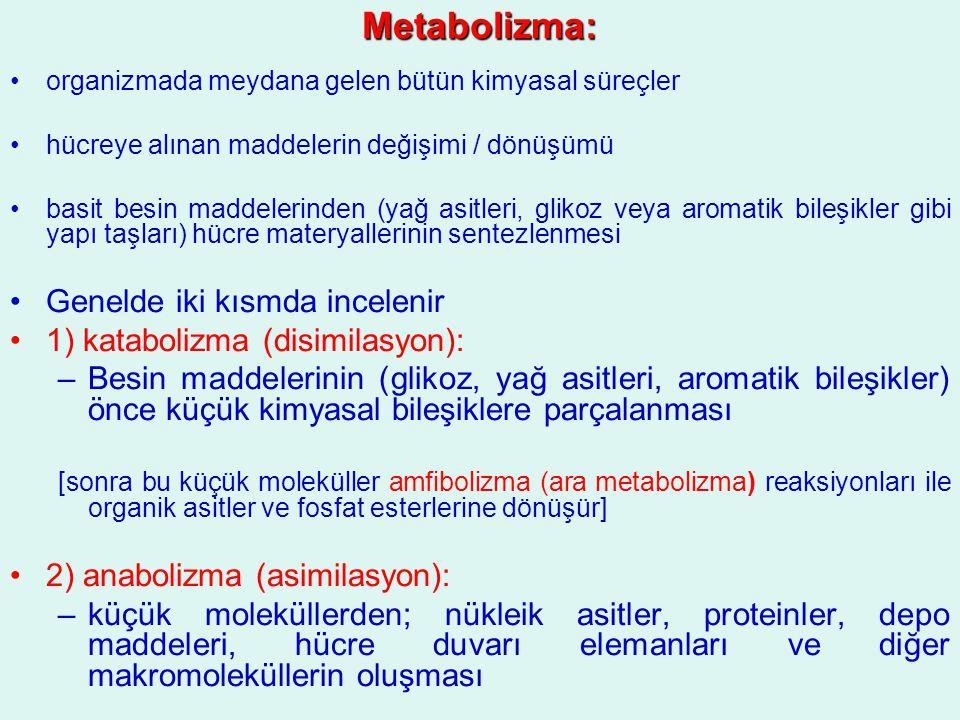 Metabolizma: organizmada meydana gelen bütün kimyasal süreçler hücreye alınan maddelerin değişimi / dönüşümü basit besin maddelerinden (yağ asitleri,