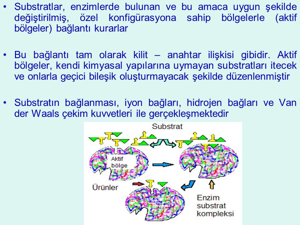 Substratlar, enzimlerde bulunan ve bu amaca uygun şekilde değiştirilmiş, özel konfigürasyona sahip bölgelerle (aktif bölgeler) bağlantı kurarlar Bu ba