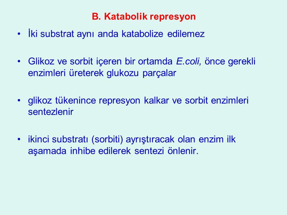 B. Katabolik represyon İki substrat aynı anda katabolize edilemez Glikoz ve sorbit içeren bir ortamda E.coli, önce gerekli enzimleri üreterek glukozu