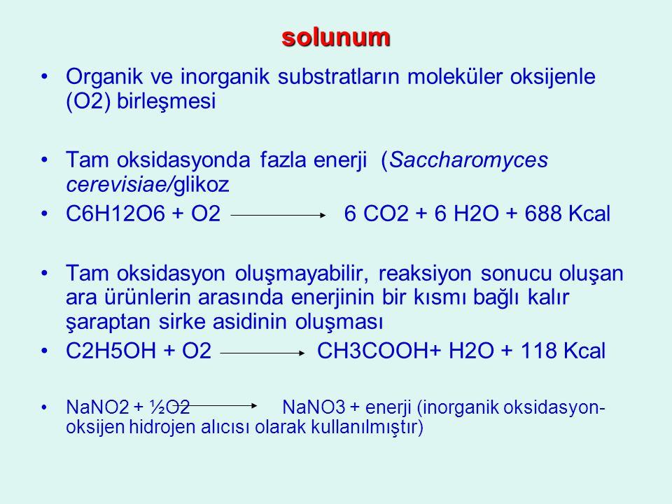 solunum Organik ve inorganik substratların moleküler oksijenle (O2) birleşmesi Tam oksidasyonda fazla enerji (Saccharomyces cerevisiae/glikoz C6H12O6