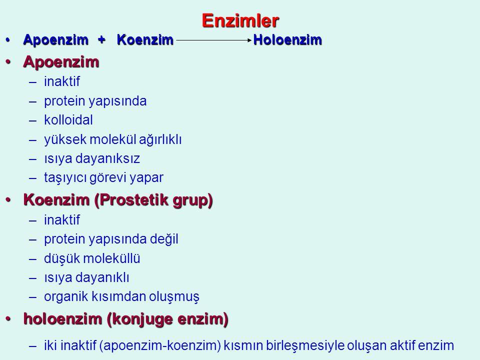 Enzimler Apoenzim + Koenzim HoloenzimApoenzim + Koenzim Holoenzim ApoenzimApoenzim –inaktif –protein yapısında –kolloidal –yüksek molekül ağırlıklı –ı