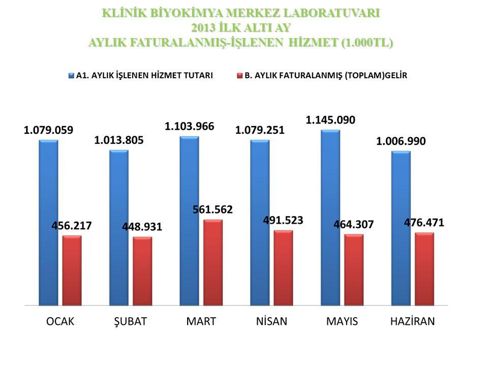 KLİNİK BİYOKİMYA MERKEZ LABORATUVARI 2013 İLK ALTI AY AYLIK FATURALANMIŞ-İŞLENEN HİZMET (1.000TL)