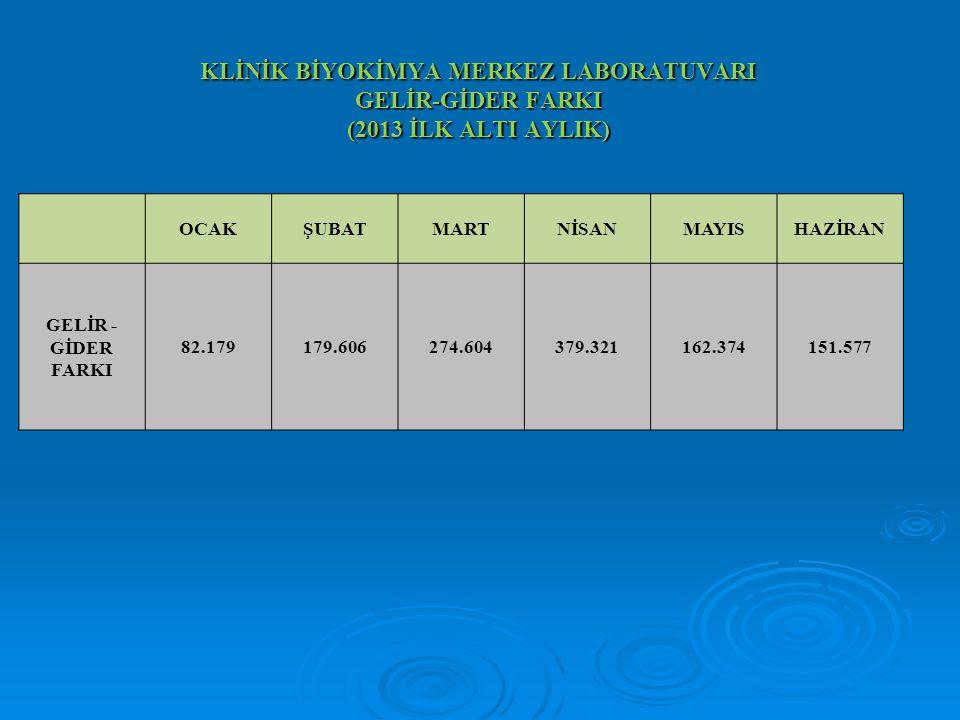 KLİNİK BİYOKİMYA MERKEZ LABORATUVARI GELİR-GİDER FARKI (2013 İLK ALTI AYLIK) OCAKŞUBATMARTNİSANMAYISHAZİRAN GELİR - GİDER FARKI 82.179179.606274.60437