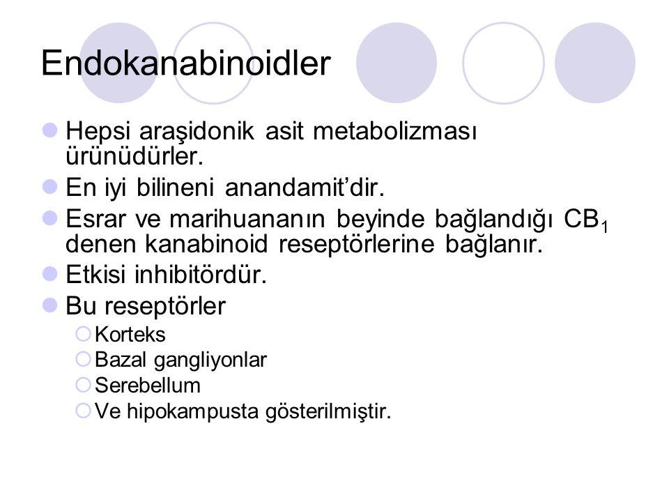 Endokanabinoidler Hepsi araşidonik asit metabolizması ürünüdürler. En iyi bilineni anandamit'dir. Esrar ve marihuananın beyinde bağlandığı CB 1 denen