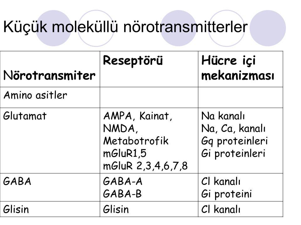 Küçük moleküllü nörotransmitterler Nörotransmiter ReseptörüHücre içi mekanizması Amino asitler GlutamatAMPA, Kainat, NMDA, Metabotrofik mGluR1,5 mGluR