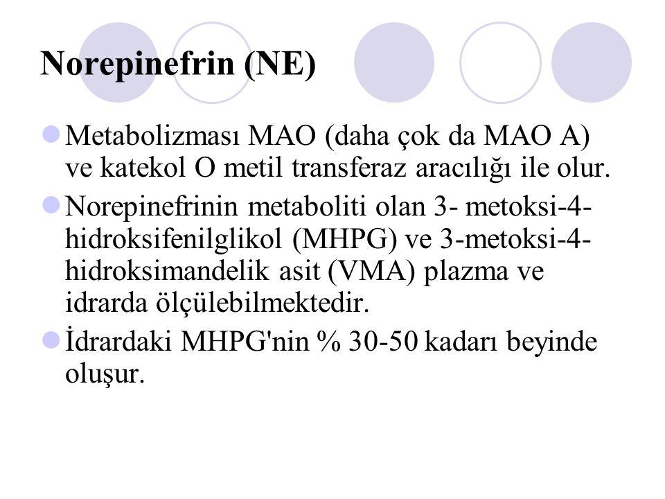 Norepinefrin (NE) Metabolizması MAO (daha çok da MAO A) ve katekol O metil transferaz aracılığı ile olur. Norepinefrinin metaboliti olan 3- metoksi-4-