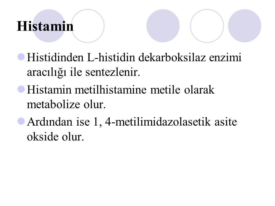 Histamin Histidinden L-histidin dekarboksilaz enzimi aracılığı ile sentezlenir. Histamin metilhistamine metile olarak metabolize olur. Ardından ise 1,