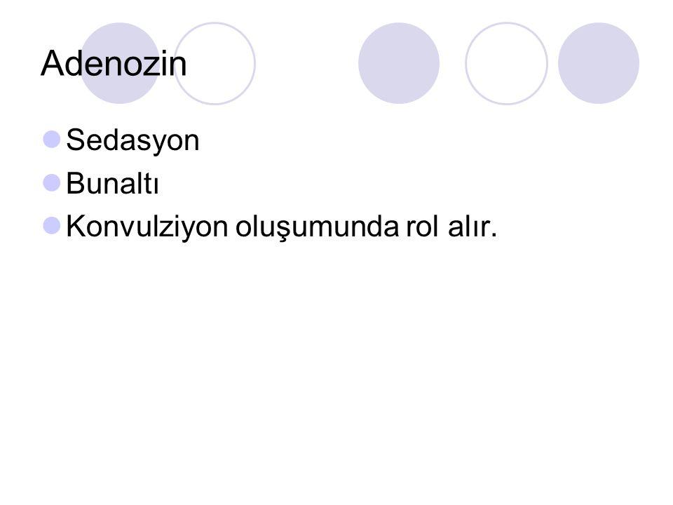 Adenozin Sedasyon Bunaltı Konvulziyon oluşumunda rol alır.