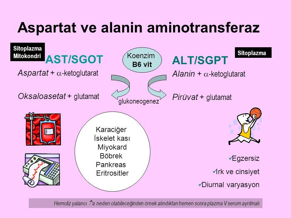 Aspartat ve alanin aminotransferaz AST/SGOT Aspartat +  -ketoglutarat Oksaloasetat + glutamat ALT/SGPT Alanin +  -ketoglutarat Pirüvat + glutamat Ko