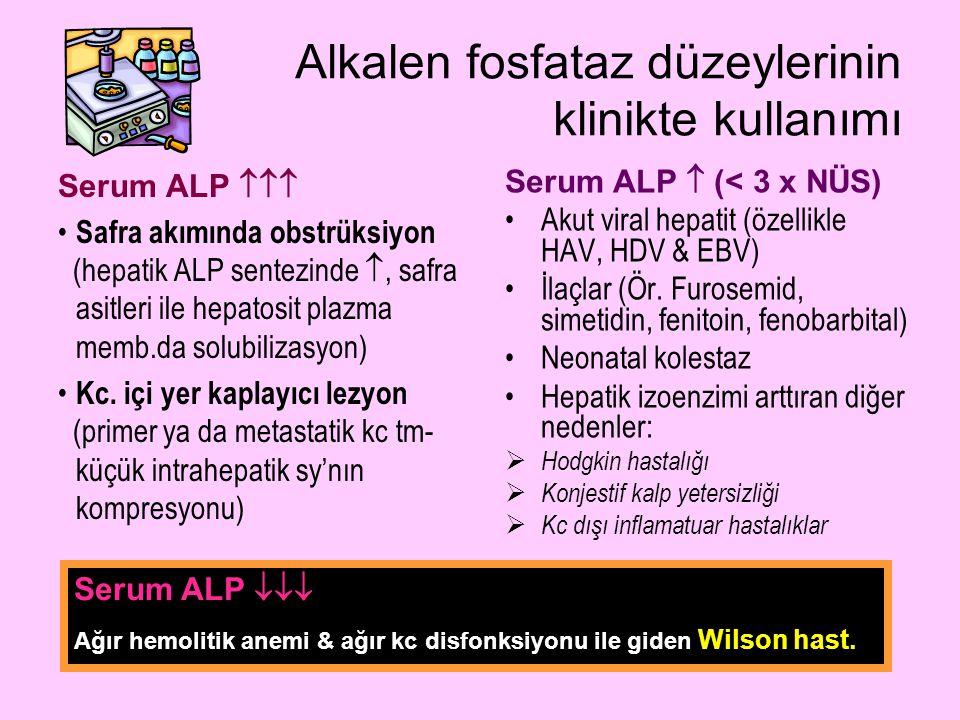 Alkalen fosfataz düzeylerinin klinikte kullanımı Serum ALP  (< 3 x NÜS) Akut viral hepatit (özellikle HAV, HDV & EBV) İlaçlar (Ör. Furosemid, simetid