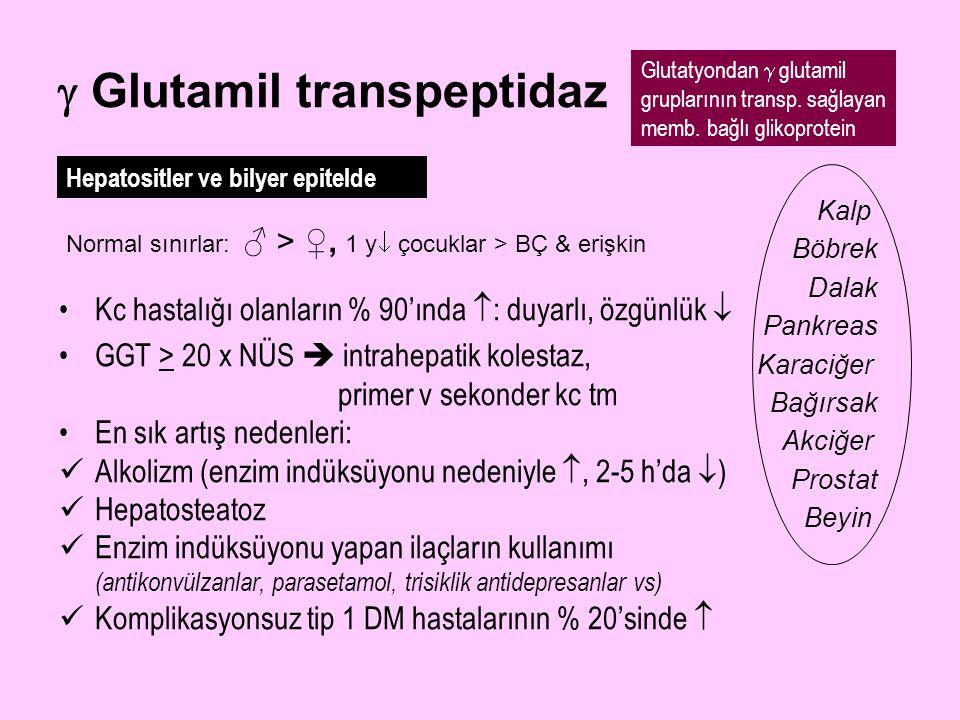  Glutamil transpeptidaz Kc hastalığı olanların % 90'ında  : duyarlı, özgünlük  GGT > 20 x NÜS  intrahepatik kolestaz, primer v sekonder kc tm En s
