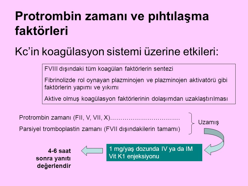 Protrombin zamanı ve pıhtılaşma faktörleri Kc'in koagülasyon sistemi üzerine etkileri: FVIII dışındaki tüm koagülan faktörlerin sentezi Fibrinolizde r