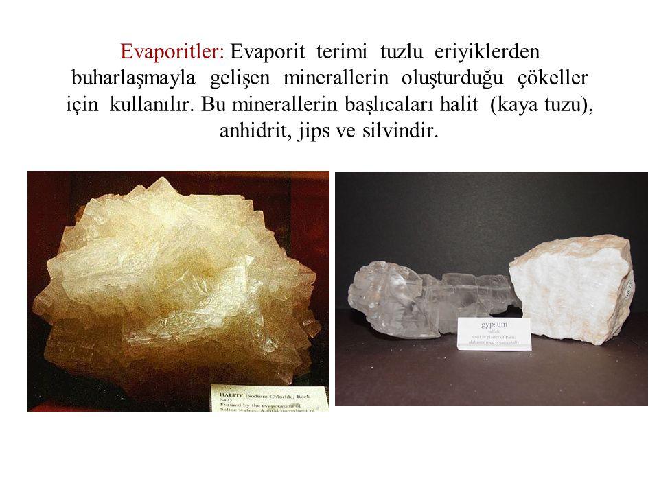 Evaporitler: Evaporit terimi tuzlu eriyiklerden buharlaşmayla gelişen minerallerin oluşturduğu çökeller için kullanılır. Bu minerallerin başlıcaları h