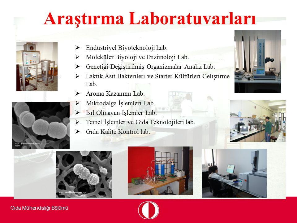 Gıda Mühendisliği Bölümü Araştırma Laboratuvarları   Endüstriyel Biyoteknoloji Lab.   Moleküler Biyoloji ve Enzimoloji Lab.   Genetiği Değiştiri