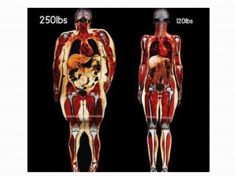 Izolasyon Yağlar deri altında ve bazı organların çevresinde (böbrek gibi) ısı izolatörü gibi rol oynar ve Sinir hücrelerinin myelin kılıflarında elekt