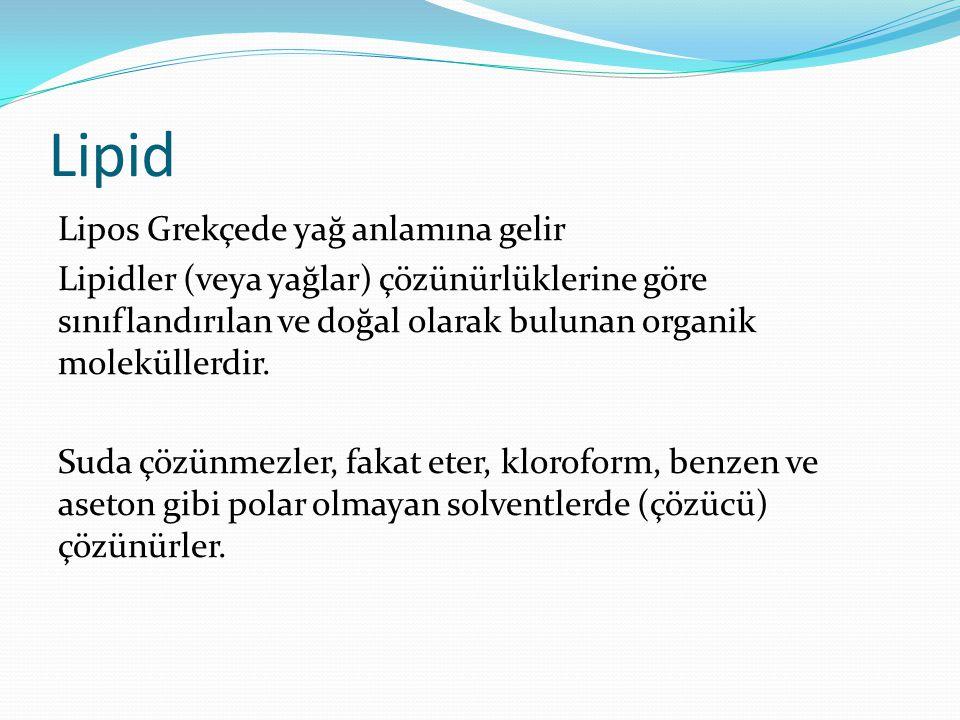 Lipid Lipos Grekçede yağ anlamına gelir Lipidler (veya yağlar) çözünürlüklerine göre sınıflandırılan ve doğal olarak bulunan organik moleküllerdir.