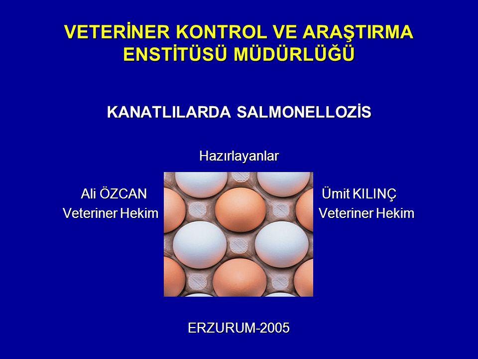 VETERİNER KONTROL VE ARAŞTIRMA ENSTİTÜSÜ MÜDÜRLÜĞÜ KANATLILARDA SALMONELLOZİS Hazırlayanlar Ali ÖZCAN Ümit KILINÇ Veteriner Hekim Veteriner Hekim ERZURUM-2005