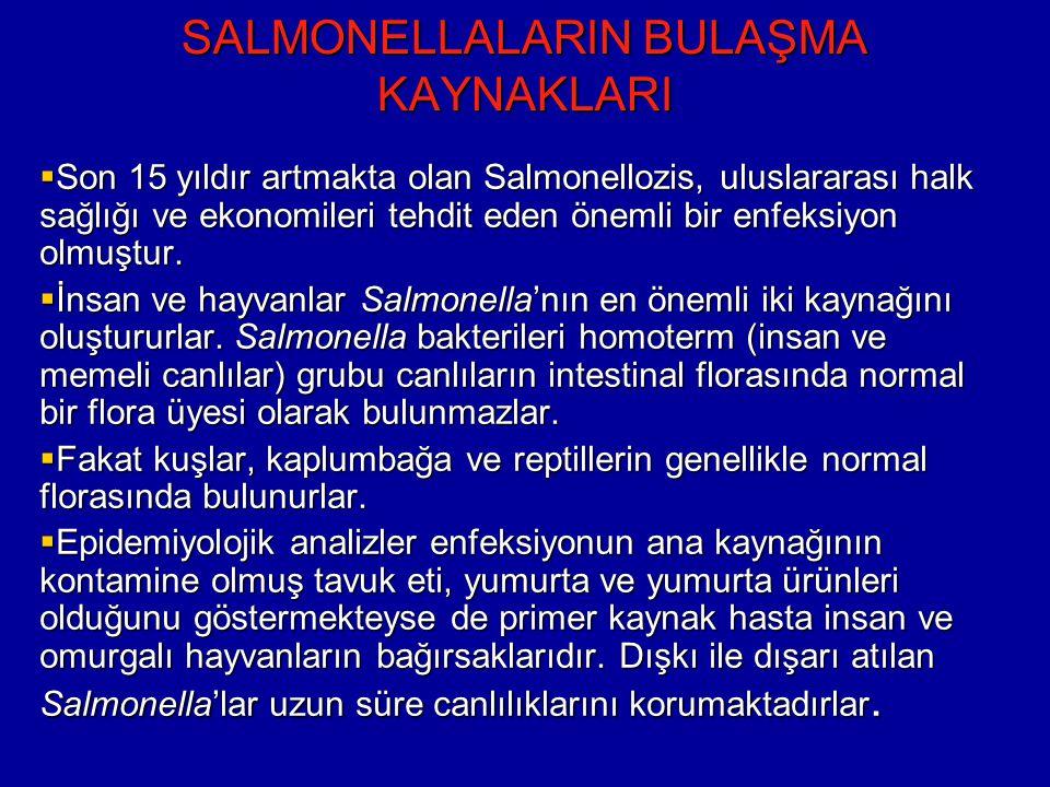 SALMONELLALARIN BULAŞMA KAYNAKLARI  Son 15 yıldır artmakta olan Salmonellozis, uluslararası halk sağlığı ve ekonomileri tehdit eden önemli bir enfeksiyon olmuştur.