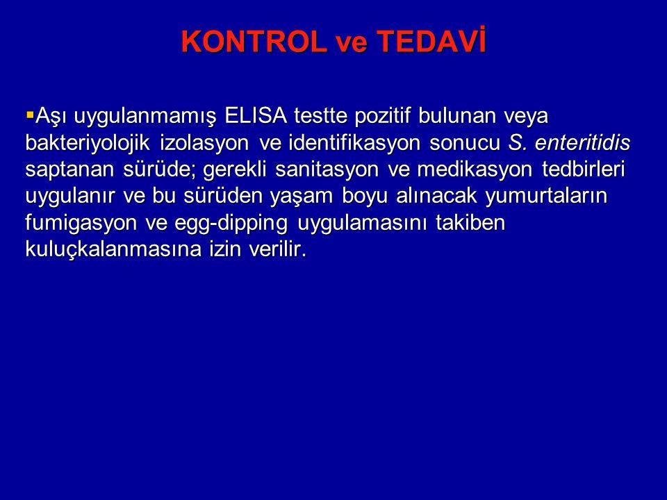 KONTROL ve TEDAVİ  Aşı uygulanmamış ELISA testte pozitif bulunan veya bakteriyolojik izolasyon ve identifikasyon sonucu S.