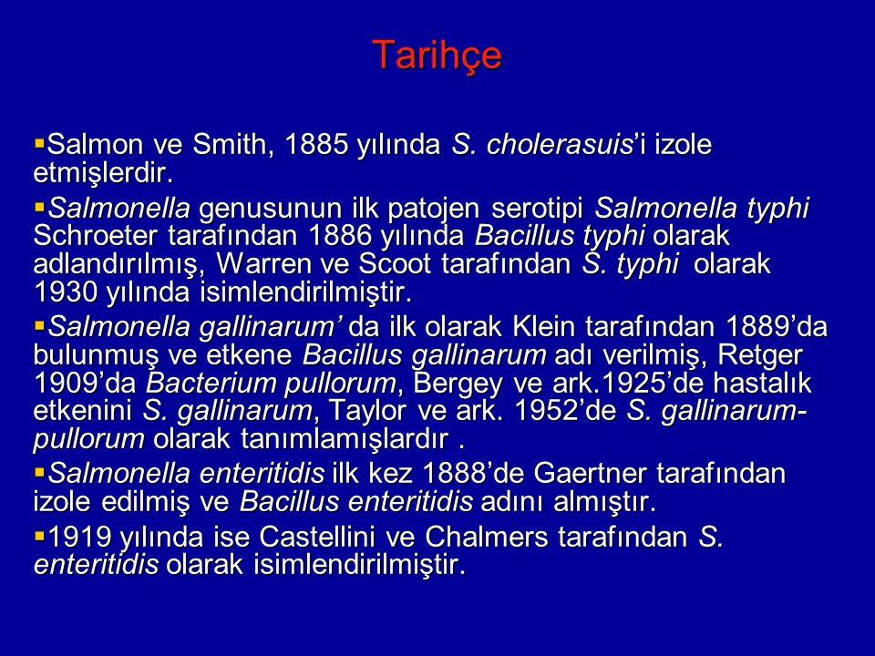 Tarihçe  Salmon ve Smith, 1885 yılında S.cholerasuis'i izole etmişlerdir.