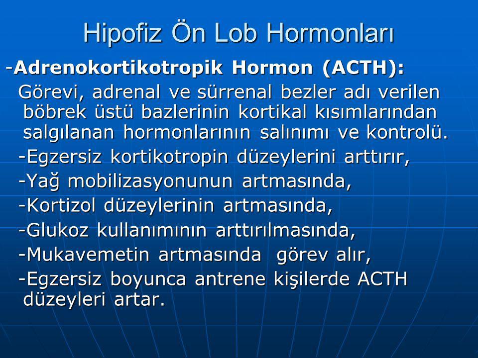Hipofiz Ön Lob Hormonları -Adrenokortikotropik Hormon (ACTH): Görevi, adrenal ve sürrenal bezler adı verilen böbrek üstü bazlerinin kortikal kısımlarından salgılanan hormonlarının salınımı ve kontrolü.