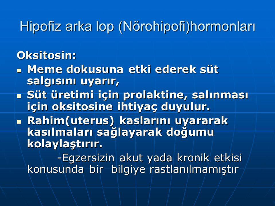 Hipofiz arka lop (Nörohipofi)hormonları Oksitosin: Meme dokusuna etki ederek süt salgısını uyarır, Meme dokusuna etki ederek süt salgısını uyarır, Süt üretimi için prolaktine, salınması için oksitosine ihtiyaç duyulur.