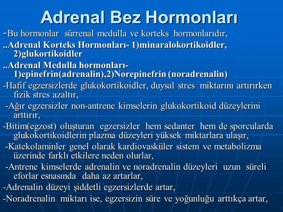 Adrenal Bez Hormonları - Bu hormonlar sürrenal medulla ve korteks hormonlarıdır,..Adrenal Korteks Hormonları- 1)minaralokortikoidler, 2)glukortikoidler..Adrenal Medulla hormonları- 1)epinefrin(adrenalin),2)Norepinefrin (noradrenalin) -Hafif egzersizlerde glukokortikoidler, duysal stres miktarını artırırken fizik stres azaltır, -Ağır egzersizler non-antrene kimselerin glukokortikoid düzeylerini arttırır, -Ağır egzersizler non-antrene kimselerin glukokortikoid düzeylerini arttırır, -Bitim(egzost) oluşturan egzersizler hem sedanter hem de sporcularda glukokortikoidlerin plazma düzeyleri yüksek miktarlara ulaşır, -Katekolaminler genel olarak kardiovasküler sistem ve metabolizma üzerinde farklı etkilere neden olurlar, -Katekolaminler genel olarak kardiovasküler sistem ve metabolizma üzerinde farklı etkilere neden olurlar, -Antrene kimselerde adrenalin ve noradrenalin düzeyleri uzun süreli eforlar esnasında daha az artarlar, -Antrene kimselerde adrenalin ve noradrenalin düzeyleri uzun süreli eforlar esnasında daha az artarlar, -Adrenalin düzeyi şiddetli egzersizlerde artar, -Noradrenalin miktarı ise, egzersizin süre ve yoğunluğu arttıkça artar,
