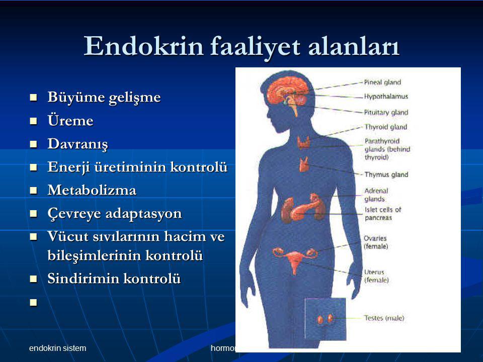 Endokrin bezler Hipofiz bezi Hipofiz bezi Tiroid bezi Tiroid bezi Paratiroid bezi Paratiroid bezi Adrenal Bez Adrenal Bez Pankreasın Langerhans adacıkları Pankreasın Langerhans adacıkları Testis ve ovaryum cinsellik bezleri Testis ve ovaryum cinsellik bezleri