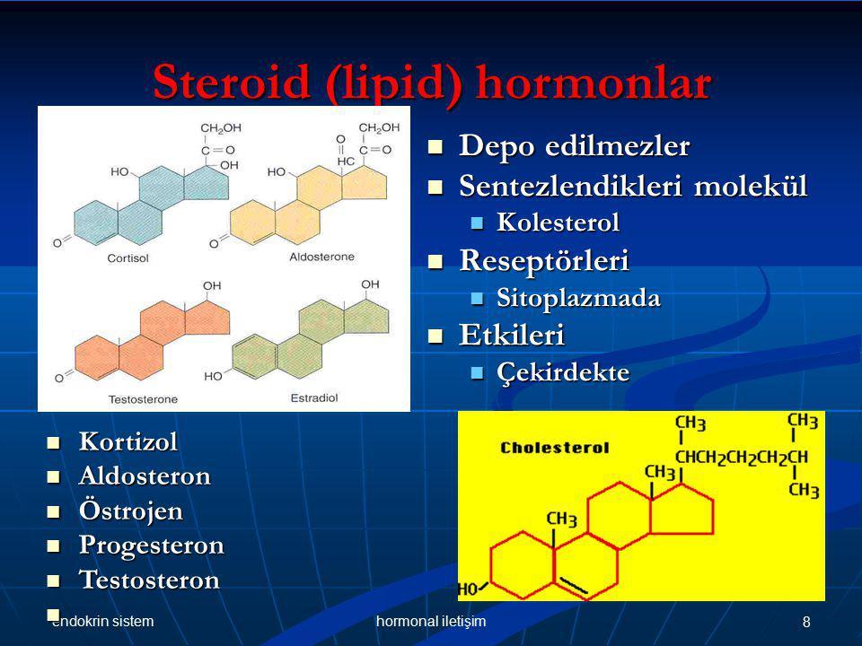 endokrin sistem 8hormonal iletişim Steroid (lipid) hormonlar Kortizol Kortizol Aldosteron Aldosteron Östrojen Östrojen Progesteron Progesteron Testosteron Testosteron Depo edilmezler Depo edilmezler Sentezlendikleri molekül Sentezlendikleri molekül Kolesterol Kolesterol Reseptörleri Reseptörleri Sitoplazmada Sitoplazmada Etkileri Etkileri Çekirdekte Çekirdekte