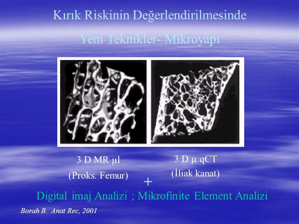 Kırık Riskinin Değerlendirilmesinde Yeni Teknikler- Mikroyapı 3 D MR µl (Proks. Femur) 3 D µ qCT (İliak kanat) Borah B. Anat Rec, 2001 + Digital imaj