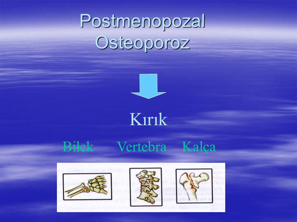 NORA çalışmasında artmış osteoporoz riski ile ilgili faktörler (150.000 kadın) ( National Osteoporosis Risk Assessment) 1.63 (1.47-1.81) 1.58 (1.48-1.68) 1.14 (1.10-1.19) 1.16 (1.11-1.22) Halen kortizon kullanımı Halen sigara içimi Önceden sigara içimi Annede fraktür hikayesi Odds Ratio (95% CI) Faktör Siris E, et al.