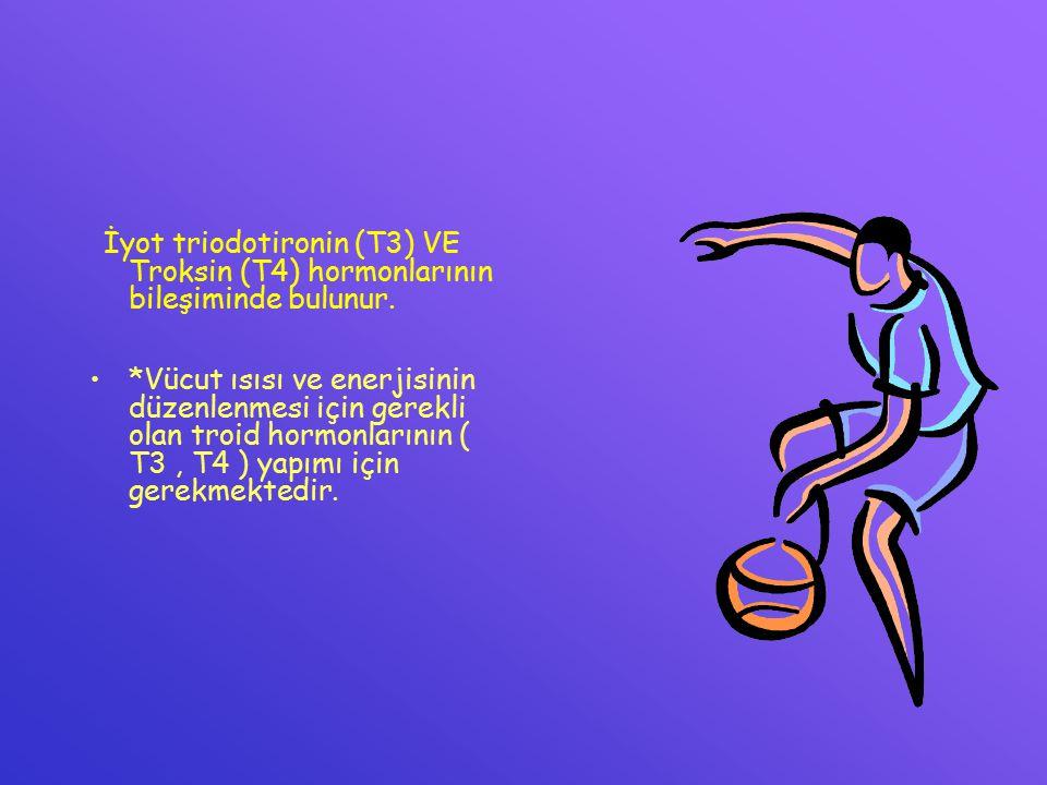 İyot triodotironin (T3) VE Troksin (T4) hormonlarının bileşiminde bulunur. *Vücut ısısı ve enerjisinin düzenlenmesi için gerekli olan troid hormonları