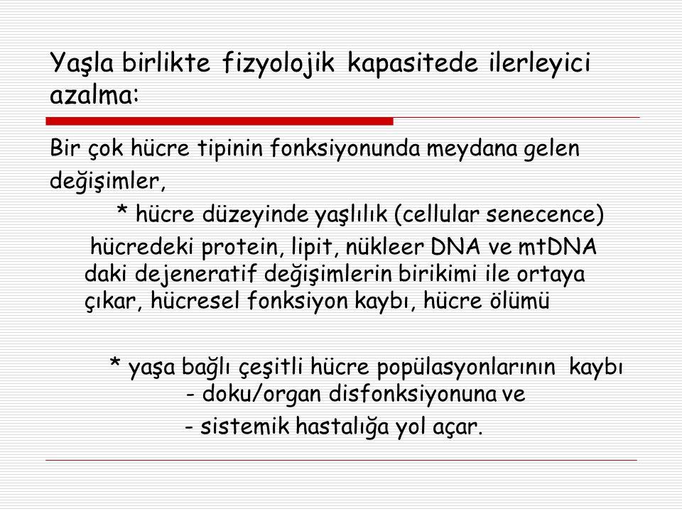 Yaşla birlikte fizyolojik kapasitede ilerleyici azalma: Bir çok hücre tipinin fonksiyonunda meydana gelen değişimler, * hücre düzeyinde yaşlılık (cell