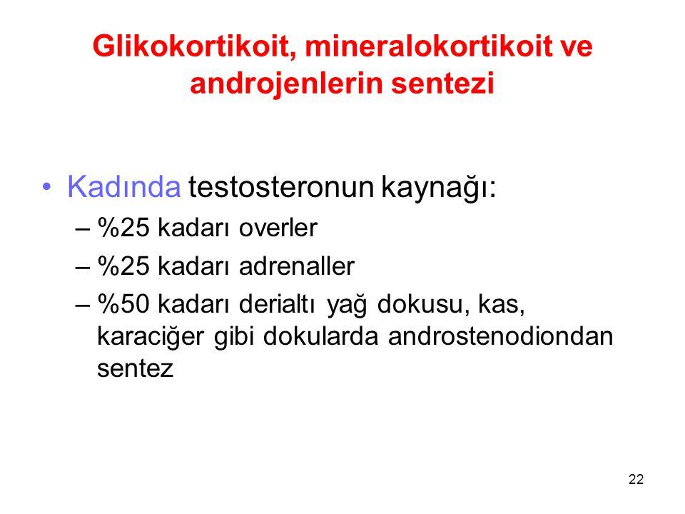 Glikokortikoit, mineralokortikoit ve androjenlerin sentezi Kadında testosteronun kaynağı: –%25 kadarı overler –%25 kadarı adrenaller –%50 kadarı deria