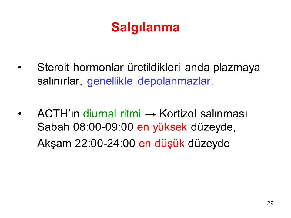 Salgılanma Steroit hormonlar üretildikleri anda plazmaya salınırlar, genellikle depolanmazlar. ACTH'ın diurnal ritmi → Kortizol salınması Sabah 08:00-