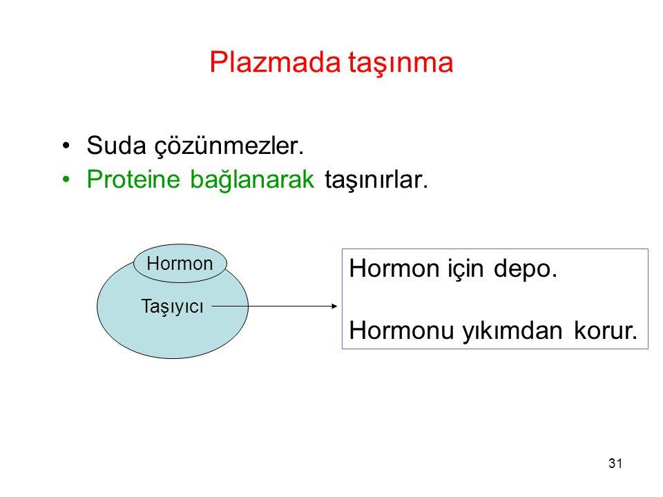 Taşıyıcı Plazmada taşınma Suda çözünmezler. Proteine bağlanarak taşınırlar. Hormon Hormon için depo. Hormonu yıkımdan korur. 31