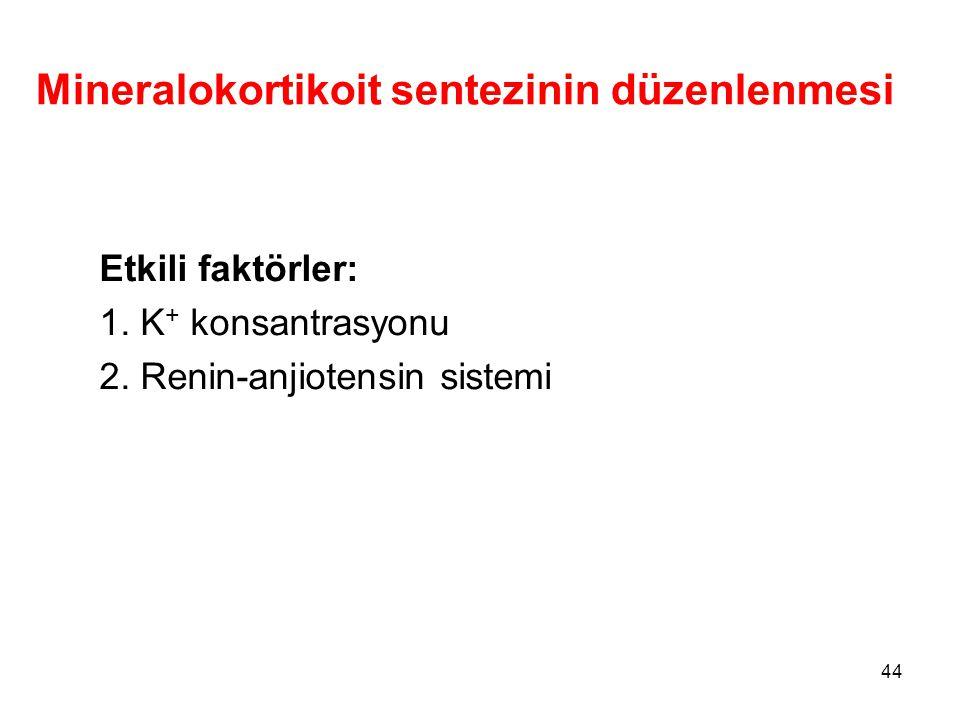 Mineralokortikoit sentezinin düzenlenmesi Etkili faktörler: 1. K + konsantrasyonu 2. Renin-anjiotensin sistemi 44