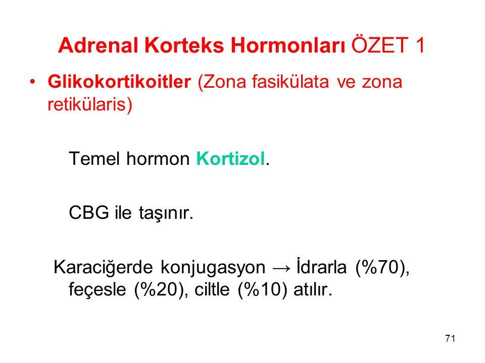 Adrenal Korteks Hormonları ÖZET 1 Glikokortikoitler (Zona fasikülata ve zona retikülaris) Temel hormon Kortizol. CBG ile taşınır. Karaciğerde konjugas