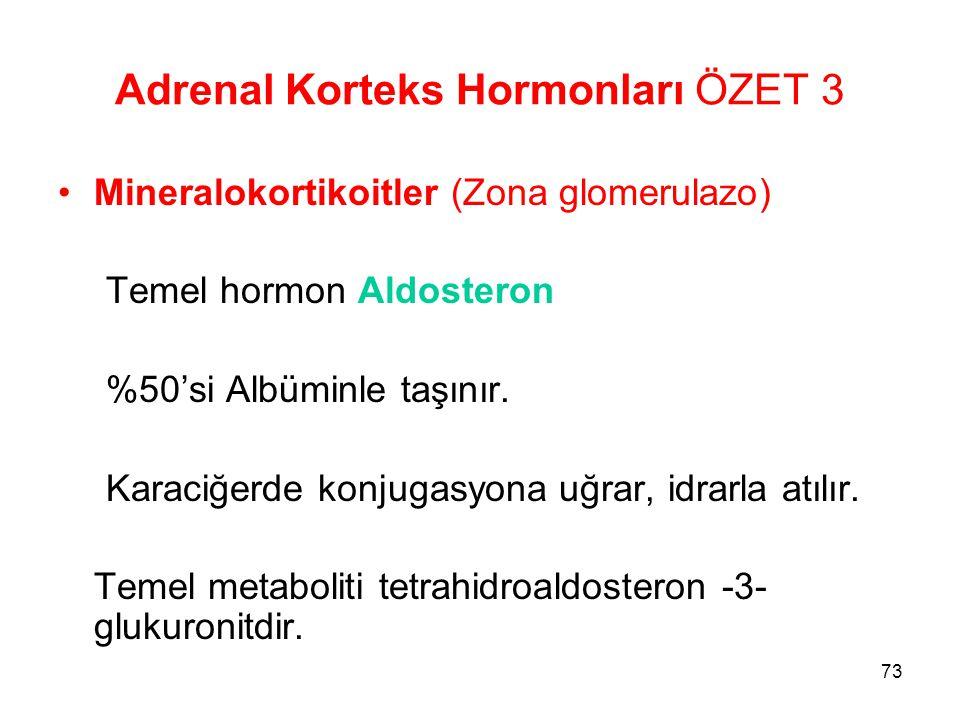 Adrenal Korteks Hormonları ÖZET 3 Mineralokortikoitler (Zona glomerulazo) Temel hormon Aldosteron %50'si Albüminle taşınır. Karaciğerde konjugasyona u