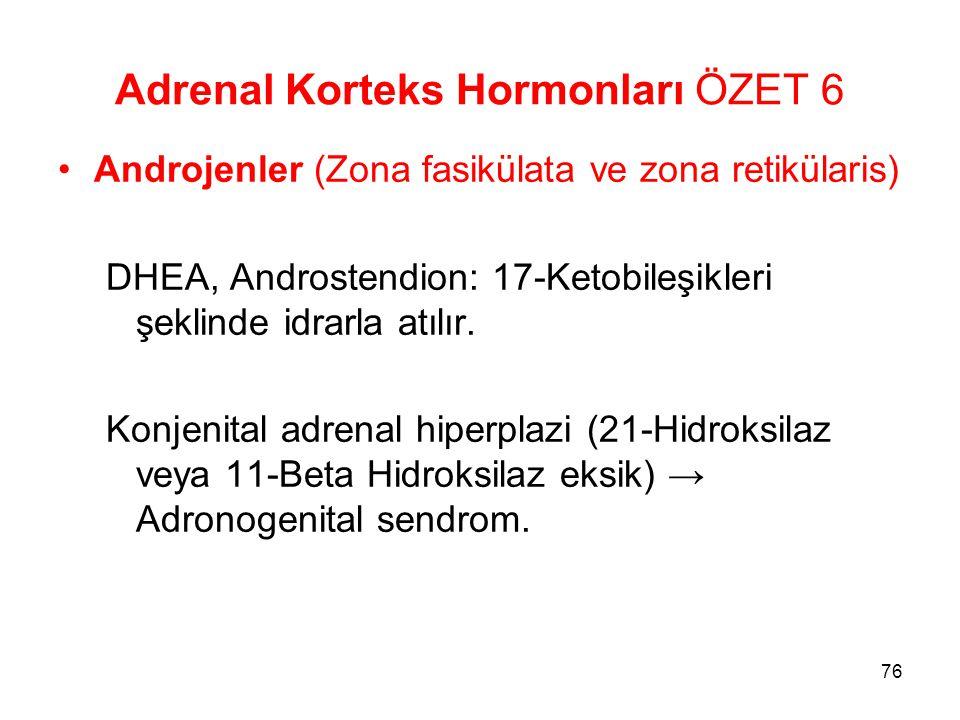 Adrenal Korteks Hormonları ÖZET 6 Androjenler (Zona fasikülata ve zona retikülaris) DHEA, Androstendion: 17-Ketobileşikleri şeklinde idrarla atılır. K