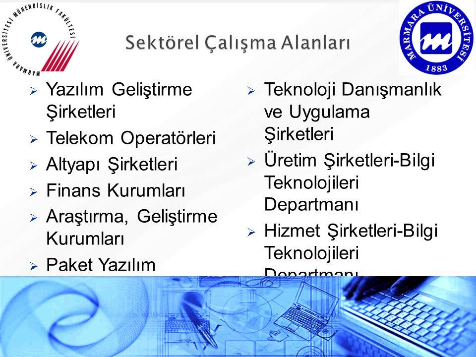  Yazılım Geliştirme Şirketleri  Telekom Operatörleri  Altyapı Şirketleri  Finans Kurumları  Araştırma, Geliştirme Kurumları  Paket Yazılım Dağıtıcıları ve Uygulamacıları  Teknoloji Danışmanlık ve Uygulama Şirketleri  Üretim Şirketleri-Bilgi Teknolojileri Departmanı  Hizmet Şirketleri-Bilgi Teknolojileri Departmanı  Devlet Kurumları-Bilgi Teknolojileri Departmanı