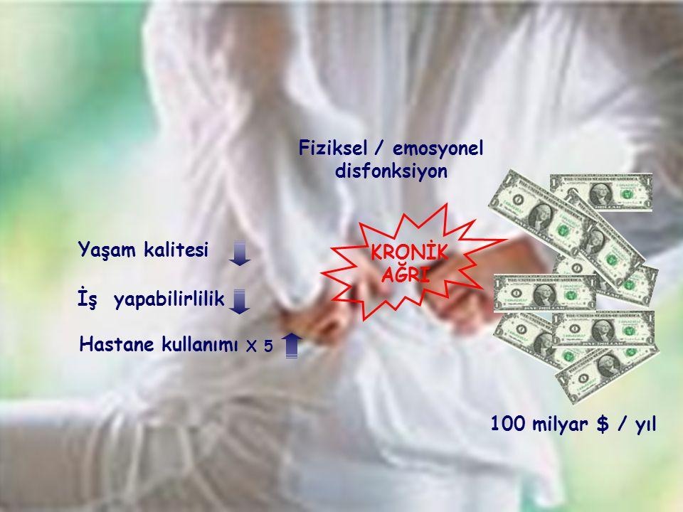 KRONİK AĞRI Fiziksel / emosyonel disfonksiyon Yaşam kalitesi İş yapabilirlilik Hastane kullanımı X 5 100 milyar $ / yıl