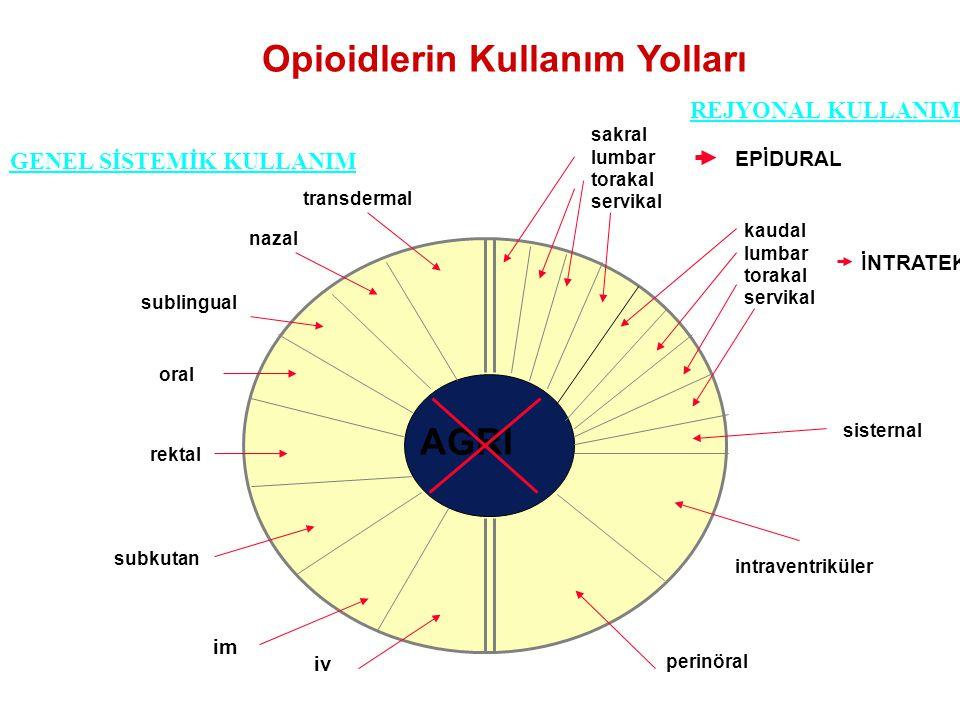 Opioidlerin Kullanım Yolları AGRI transdermal nazal sublingual oral rektal subkutan im iv sakral lumbar torakal servikal kaudal lumbar torakal servika