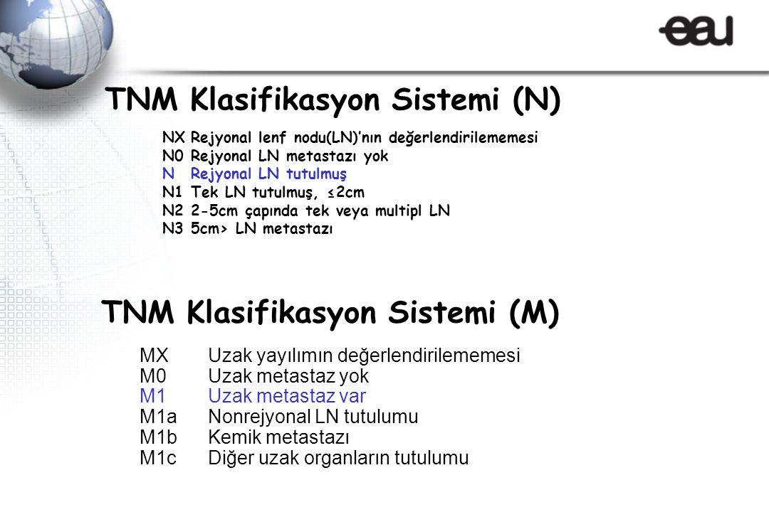 TNM Klasifikasyon Sistemi (N) NXRejyonal lenf nodu(LN)'nın değerlendirilememesi N0Rejyonal LN metastazı yok NRejyonal LN tutulmuş N1Tek LN tutulmuş, ≤2cm N22-5cm çapında tek veya multipl LN N35cm> LN metastazı MXUzak yayılımın değerlendirilememesi M0Uzak metastaz yok M1Uzak metastaz var M1aNonrejyonal LN tutulumu M1bKemik metastazı M1cDiğer uzak organların tutulumu TNM Klasifikasyon Sistemi (M)